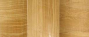 Cách phân biệt các loại gỗ tự nhiên - gỗ bạch tùng