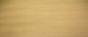 Cách phân biệt các loại gỗ tự nhiên - gỗ dổi