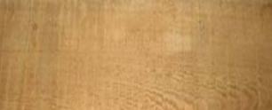Gỗ tạp giống gỗ tần bì
