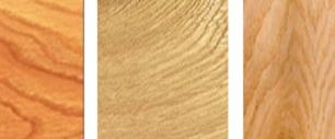 Cách phân biệt các loại gỗ tự nhiên - sồi trắng