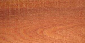 Cách phân biệt các loại gỗ tự nhiên - gỗ xoan đào